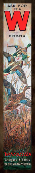 Painting - Winchester Bird And Trap Ammo Display by Lynn Bogue Hunt