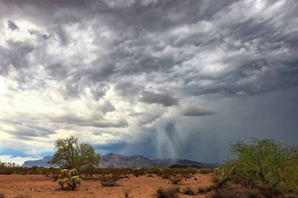 Photograph - Wind And Rain by Rick Furmanek