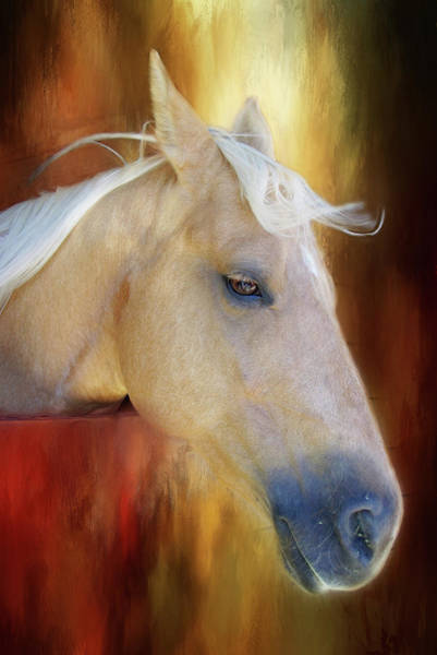 Photograph - Wind In Her Hair by Marilyn Wilson