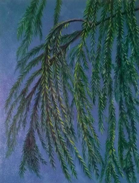 Wall Art - Painting - Wind In The Willow by Joann Renner