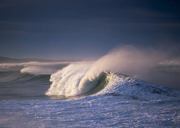 Photograph - Wind On A Wave by Robert Potts