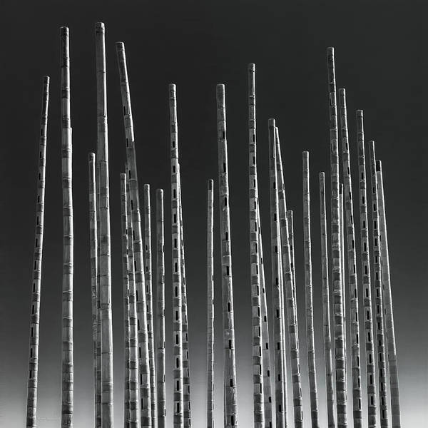 Bamboo Photograph - Wind Organ by Wim Lanclus