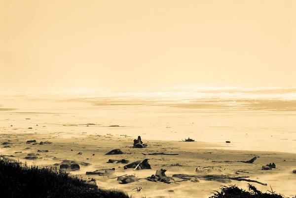 Oregon Coast Digital Art - Wind Storm On The Beach by Craig Perry-Ollila
