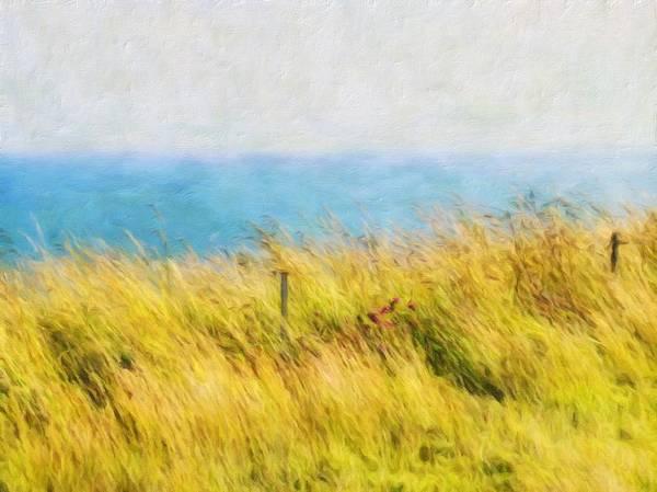 Wall Art - Photograph - Wind Toss by Connie Handscomb
