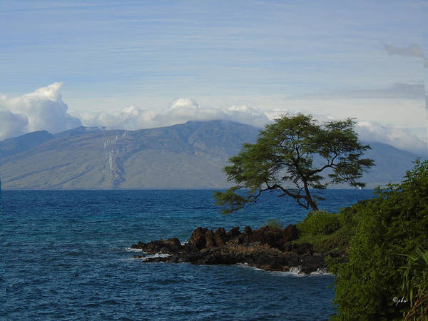 Photograph - Wind Turbines - Maui by Paulette B Wright