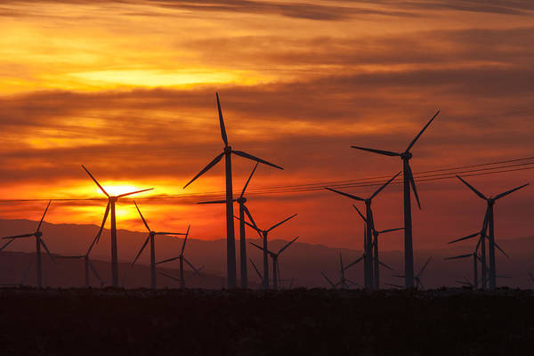 Photograph - Wind Turbines Sunrise by Clarence Holmes