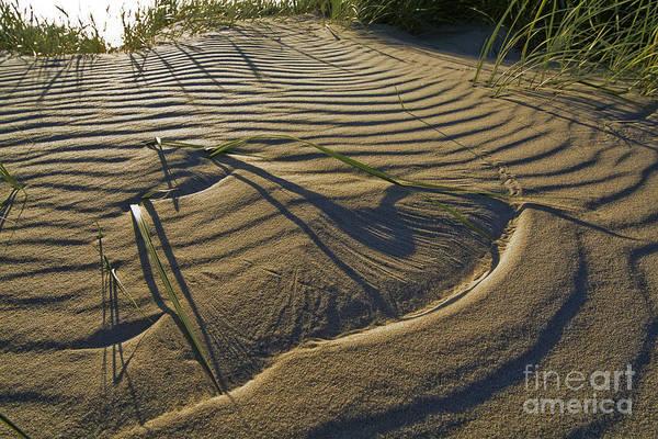 Wall Art - Photograph - Wind Waves by Wedigo Ferchland