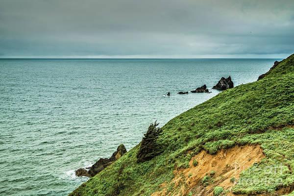 Photograph - Windblown by Jon Burch Photography