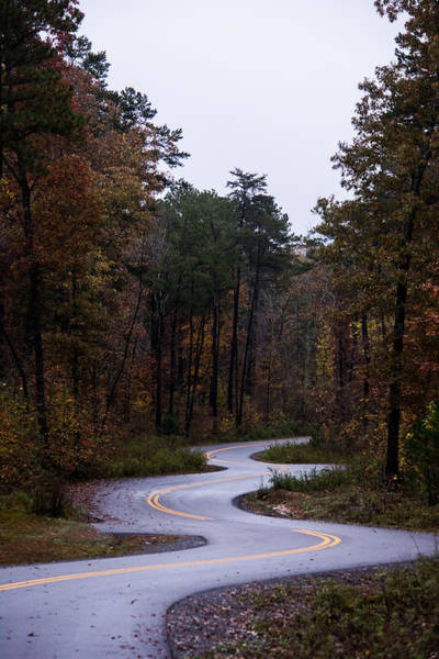 Photograph - Winding Autumn Road by Parker Cunningham