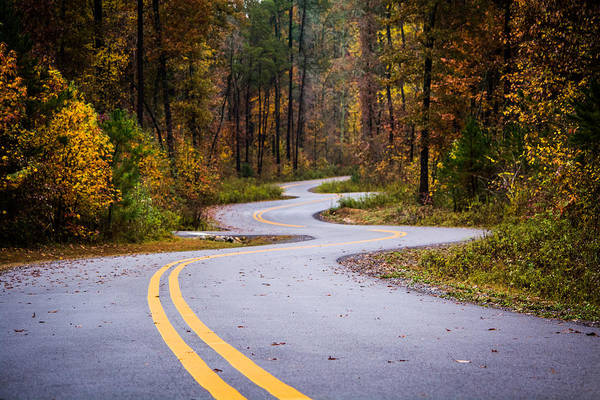 Photograph - Winding Autumn Roads by Parker Cunningham