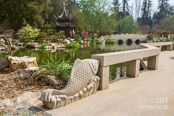 Wall Art - Photograph - Winding Bridge In The Chinese Garden At The Huntington. by Jamie Pham