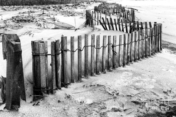 Photograph - Winding Dune Fence by John Rizzuto