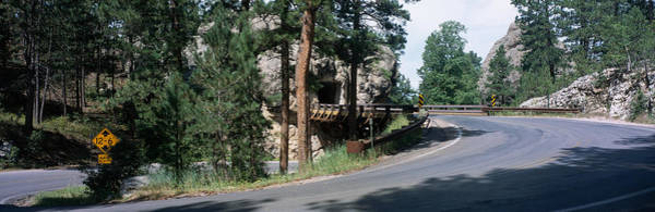 Perilous Wall Art - Photograph - Winding Road Sd by Panoramic Images
