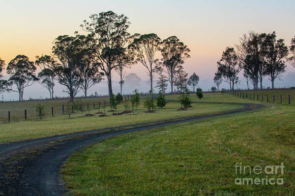 Wall Art - Photograph - Winding Road Through Paddock At Dawn by Sheila Smart Fine Art Photography