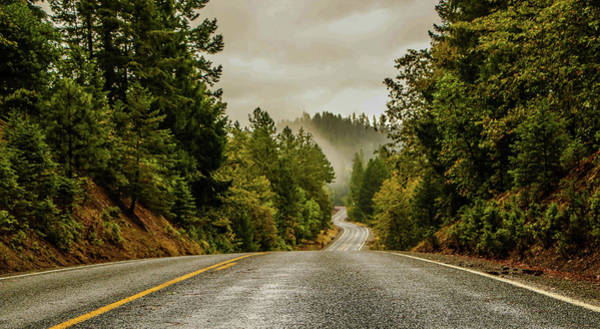 Photograph - Winding Roads And Rolling Fog by Chaznik Raab