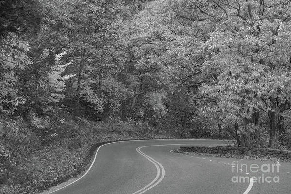 Shenandoah Wall Art - Photograph - Winding Roads Of Skyline Drive  by Michael Ver Sprill