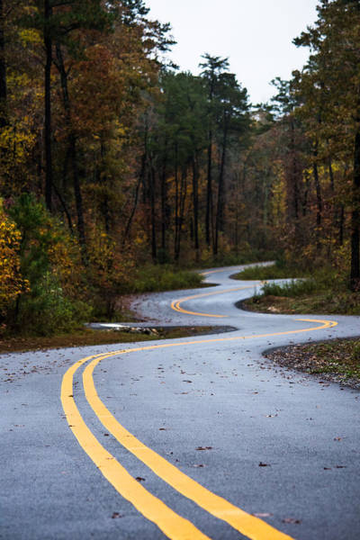 Photograph - Winding Roads by Parker Cunningham
