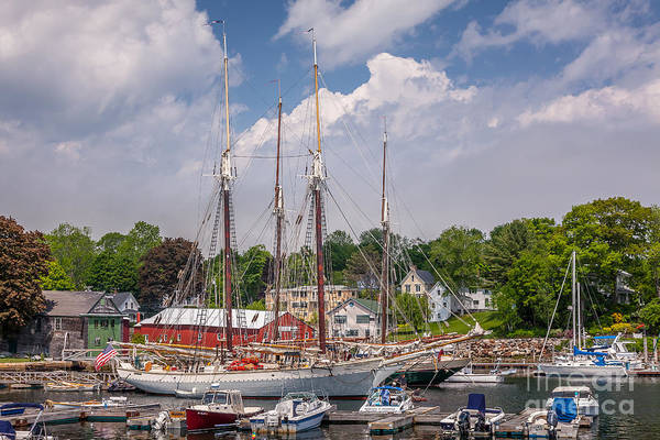 Photograph - Windjammers In Camden Harbor by Susan Cole Kelly