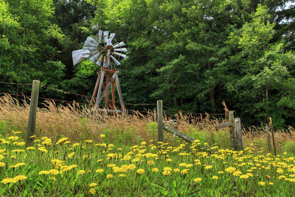 Photograph - Windmill And Flowers by James Eddy
