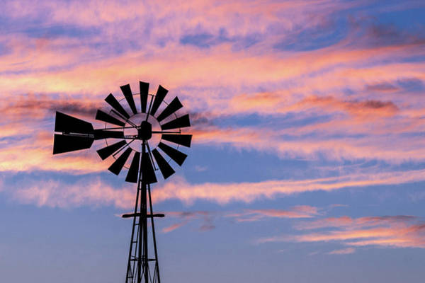 Photograph - Windmill And Lavender Light by Todd Klassy