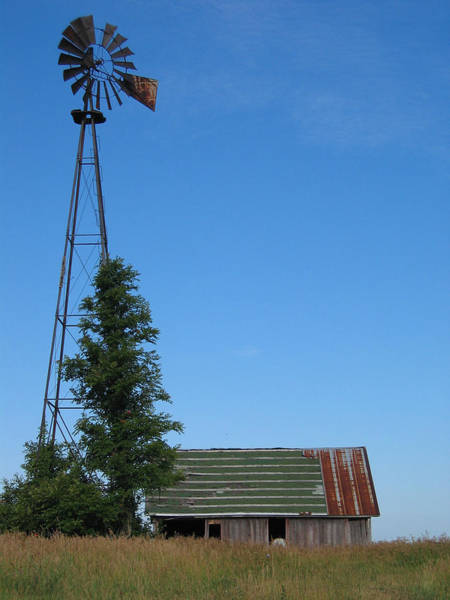 Photograph - Windmill by Dylan Punke
