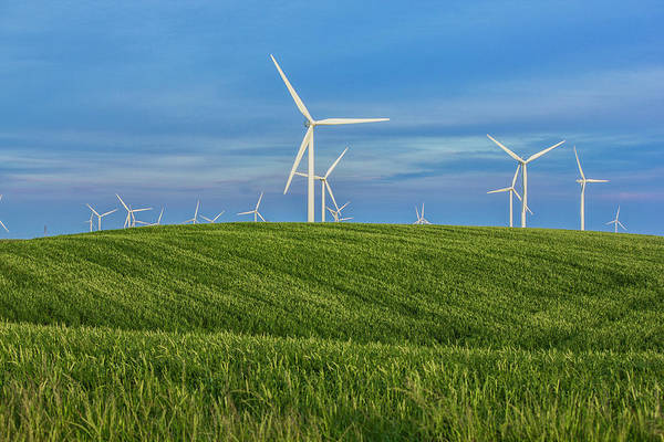 Photograph - Windmill Farm by Randy Bayne