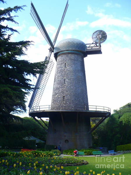 Photograph - Windmill In Golden Gate Park by Carol Groenen