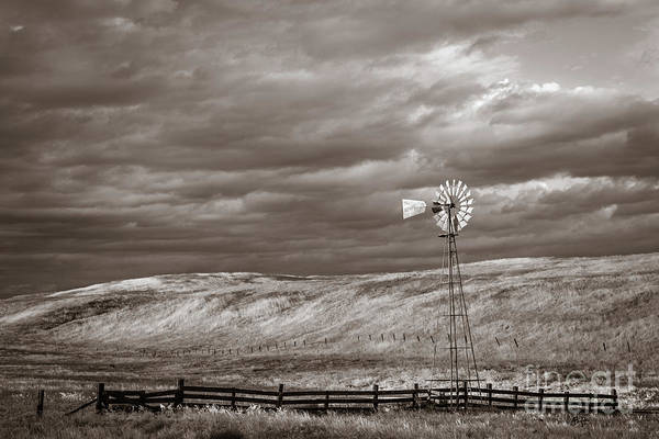 Photograph - Windmill Sepia by Anthony Bonafede