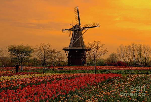 Photograph - Windmill Sunset by Rachel Cohen