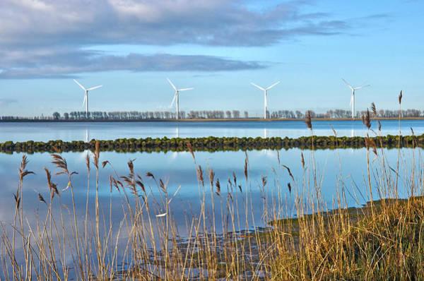 Windmills On A Windless Morning Art Print