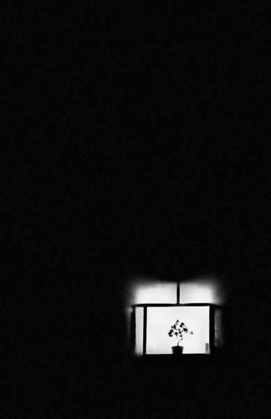 Photograph - Window #0521 by Andrey Godyaykin