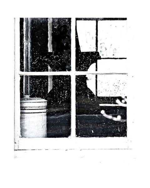 Photograph - Window 3679 by John Feiser