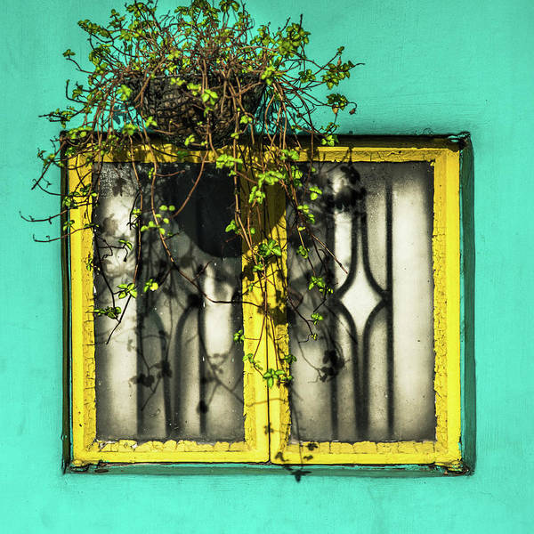 Photograph - Window And Basket by Michael Arend