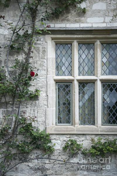 Rusty Chain Wall Art - Photograph - Window And Rose by Svetlana Sewell