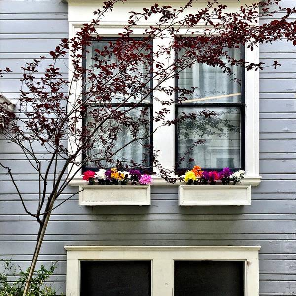 Wall Art - Photograph - Window Boxes by Julie Gebhardt