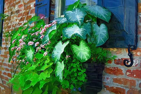 Photograph - Window Flower Box by Donna Bentley