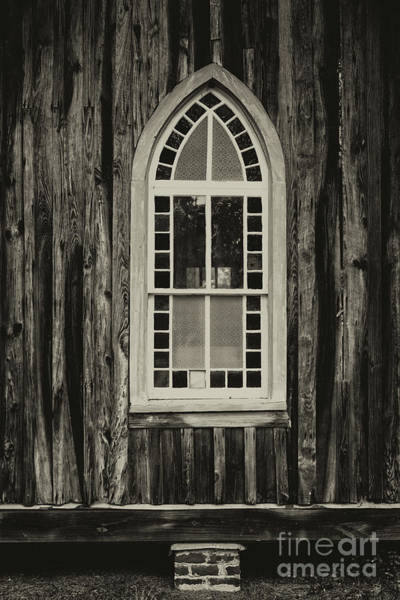 Photograph - Window Gazing by Dale Powell