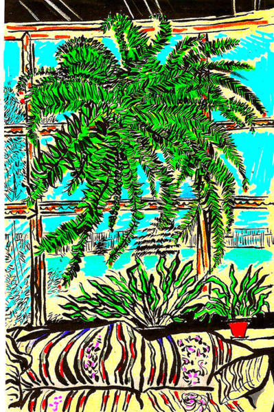 South Beach Drawing - Window Loving Fern by Al Goldfarb
