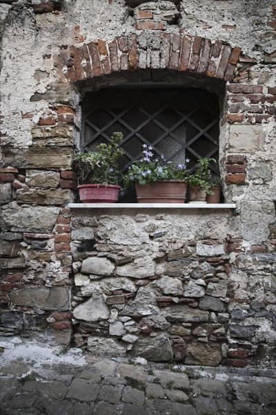 Photograph - Window by Maria Heyens