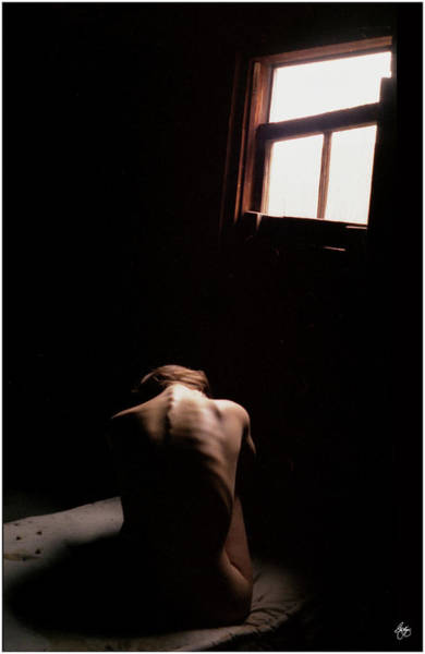 Photograph - Window Nude by Wayne King