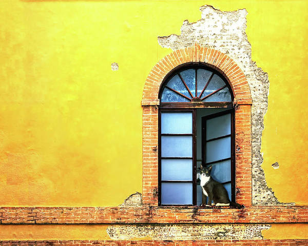 Wall Art - Photograph - Window On Colorful Wall In Siena Italy by Susan Schmitz