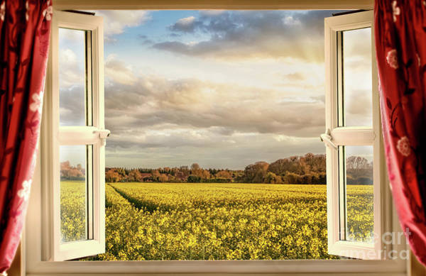 British Open Digital Art - Window Open With A View Onto Farm Crops by Simon Bratt Photography LRPS