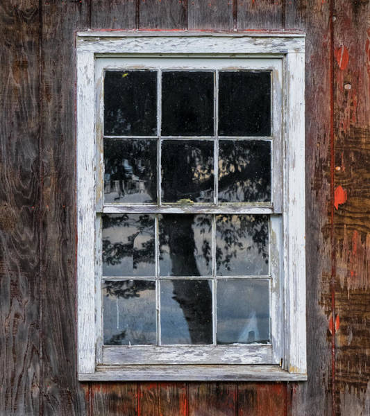 Photograph - Window Reflection by Tom Singleton