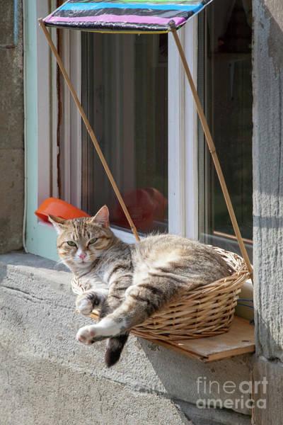 Photograph - Window Seat by Heiko Koehrer-Wagner