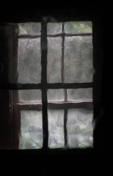 Photograph - Window Through A Window by Tom Singleton
