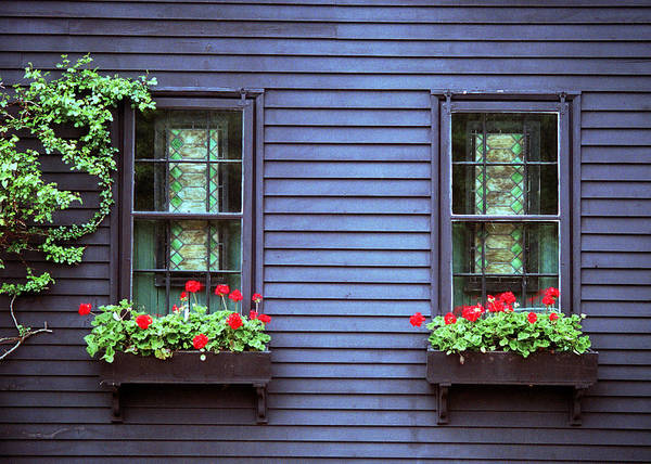 Photograph - Window View by Kenneth Campbell
