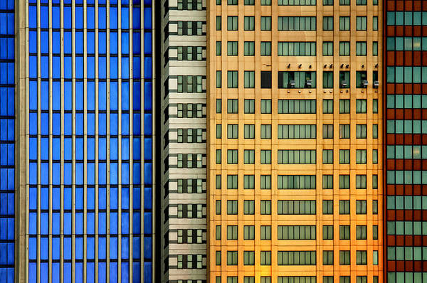Tall Photograph - Windows On The City by Mathilde Guillemot