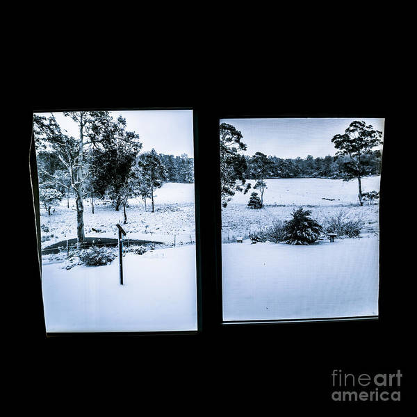 Photograph - Windows To Winter by Jorgo Photography - Wall Art Gallery