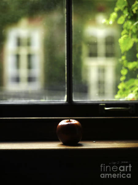 Photograph - Windowsill Apple by Craig J Satterlee