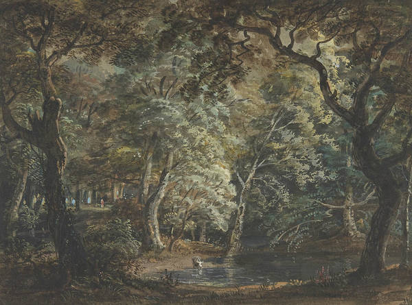 Drawing - Windsor Great Park by Paul Sandby